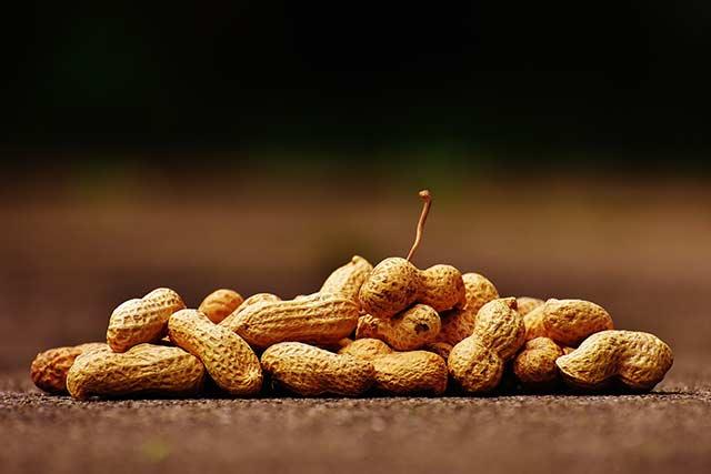 Арахисовый орех относится к распространенным бобовым культурам, завоевавшим свою популярность среди населения за счет своих полезных качеств.