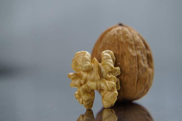 Грецкие орехи при грудном вскармливании новорождённого: можно ли кормящей маме