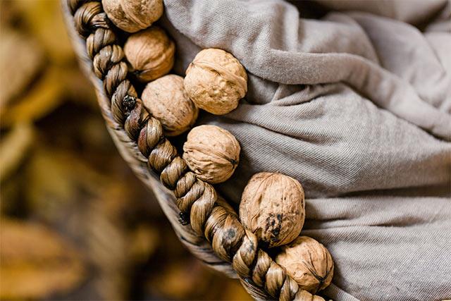 Срок годности и способы хранения грецких орехов