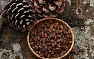 К чему снятся кедровые орехи